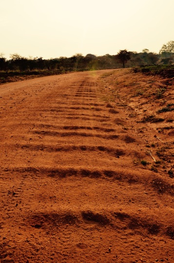After an hour on this road, we started longing for the pavement with trucks and potholes!