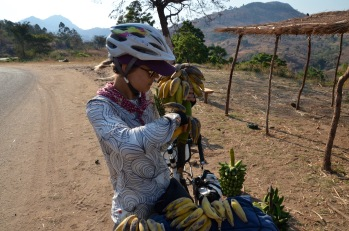 Bananas, a cyclists jet fuel.