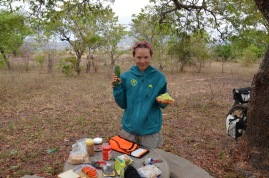 Our route in Zimbabwe was lined with picnic tables, much to our delight!