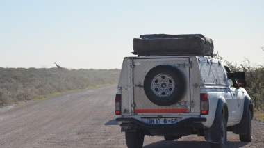 Stopped overlander usually means animal sighting - from lion to impala