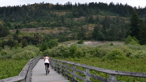 Cycling to Mt. Finlayson