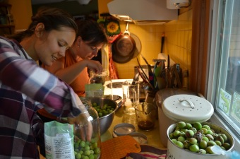 Making plum wine with family