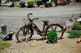 This bike needs a little lovin'